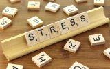 stresul